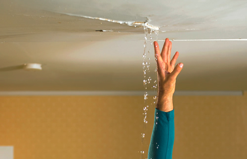 Leaks are gut-wrenching for any property owner. Here are some tips and information to help you manage a water leak in your home.
